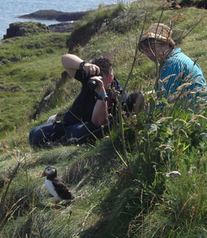 A puffin being observed by two women.