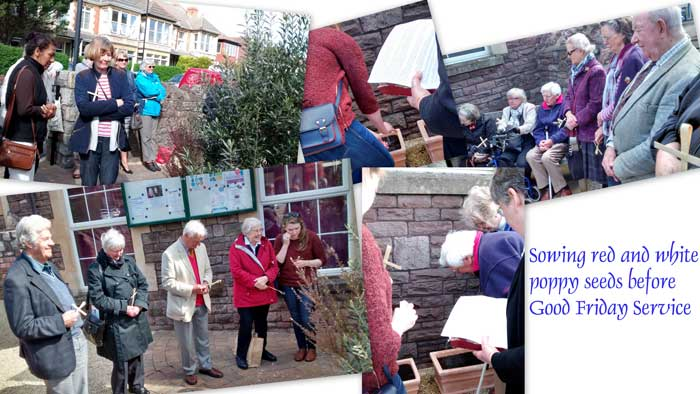 Collage of Good Friday planting of poppy seeds in the church garden.